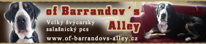 banner_of_barrandovs_alley